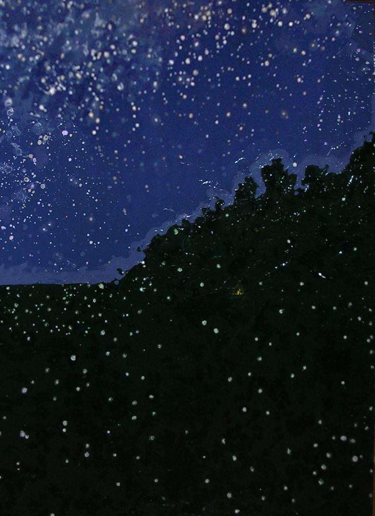 "Stars and Fireflies by Lisa Leppa, acrylic on canvas, 36"" x 48"""